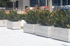 austin-martin-planter-1-e1517849768509-1024x421